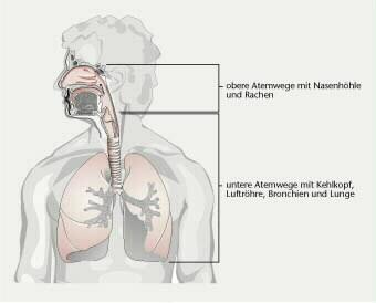 bei lungenkrebs atemnot